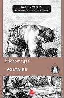 16 - Micromegas
